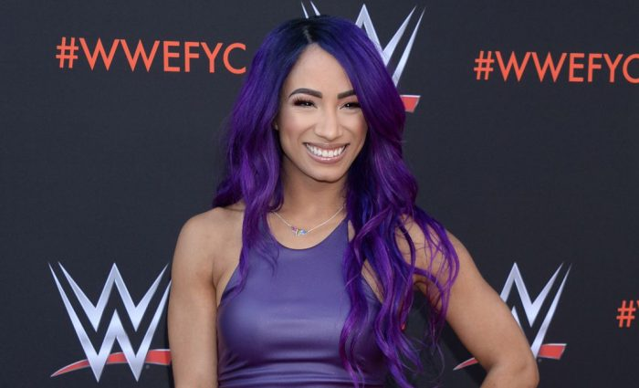 Sasha Banks Wedding.Sasha Banks Lifestyle Wiki Net Worth Income Salary House Cars